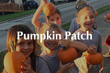 2018 Pumpkin Patch